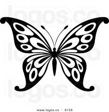 best 25 white butterfly ideas on beautiful