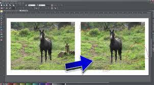 magix foto und grafik designer magix foto grafik designer 7 bildbearbeitung mit neuen funktionen