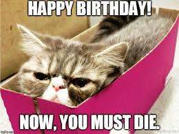 Grumpy Cat Meme Happy Birthday - 58 grumpy cat birthday wishes