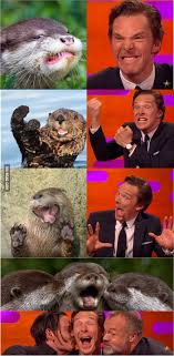 Benedict Cumberbatch Otter Meme - benedict cumberbatch was sweet enough to do some otter poses on