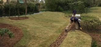 sod advanced drainage solutions