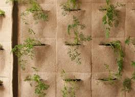farmtina vertical gardening