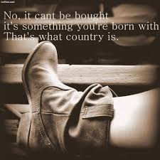 Cowgirl Memes - 60 most famous cowgirl quotes popular country girl sayings images