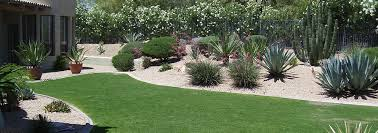 phoenix landscaping company lawn and yard care maintenance