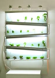 best 20 herb planters ideas on pinterest growing herbs home design ideas my apartment garden how to grow an indoor herb or