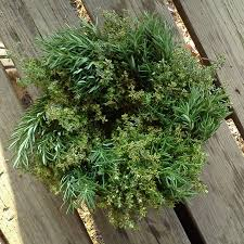 herb wreath rosemary lemon thyme wreath stokes farm