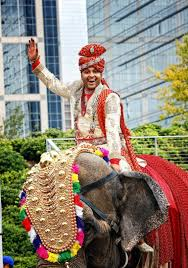 indian wedding groom houston indian wedding celebration with 800 person guest list