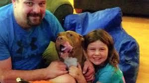 Barker Dog Bed Big Barker Dog Bed Review Shawna And Otis The Great Dane Video