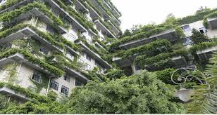 china is building skyscrapers of trees