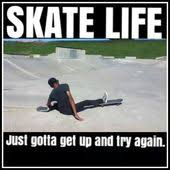 Skate Memes - the most certain way to succeed is always to try just one more