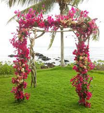 bougainvillea arch sugarman floral decor pinterest