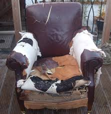 Armchair Supporter Armchair Supporters Upholstery Inverness