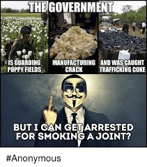 Anonymous Meme - the government is guarding manufacturing and wascaught poppy