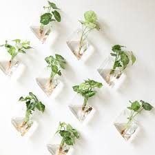 set of 9 rhombus glass wall vase indoor plants wall planters