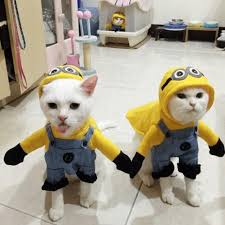 amazing minions cat and dogs costume pawsome couture