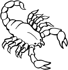 scorpion coloring free printable coloring pages