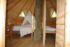 chambres dans les arbres les ecureuils cabane dans les arbres familiale hébergement insolite