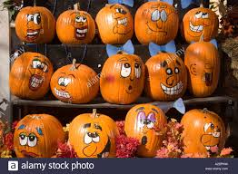 rustic shelves filled with painted jack o lantern halloween stock
