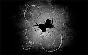 wallpapers of glitter butterflies black butterfly wallpaper funny animal