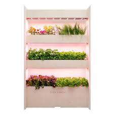 indoor herb garden kit and refills click u0026 grow