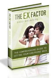the ex brad browning s the ex factor guide review my experience with it