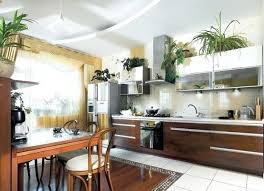 ideas for above kitchen cabinets above kitchen cabinets decor greenery above kitchen cabinets ideas