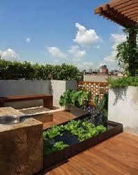 garden design roof garden picture with green plants roof garden