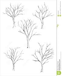 tree sketch stock illustration image of branch tree 19437052