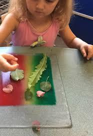 bluseed adds kids art classes u2014 art in the adirondacks