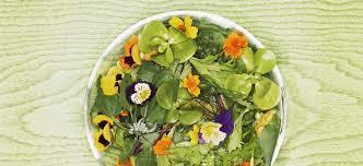 les fleurs comestibles en cuisine fête des mères comment cuisine t on les fleurs comestibles sur