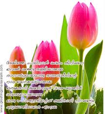 Wedding Wishes Quotes In Malayalam Pictures Aishwaryas143 Peperonity Net