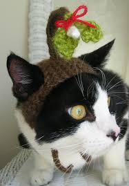 mistletoe hat catsparella cat hat fix scooter knits