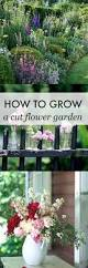 How To Make An Urban Garden - 406 best barb schwarz garden images on pinterest landscaping