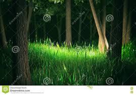 dark forest 3d render stock illustration image 74415529