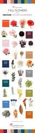 fall 2017 pantone colors fall flower colors u2013 2017 pantone color inspiration see more on
