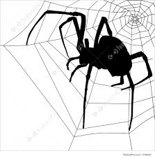 illustration of frightening halloween spider and web silhouette