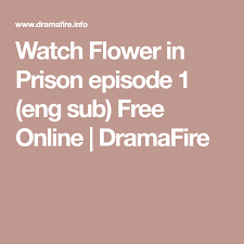 dramafire flower in prison watch flower in prison episode 1 eng sub free online dramafire