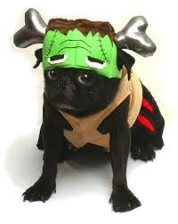 Halloween Dogs Costumes Halloween Dog Costumes