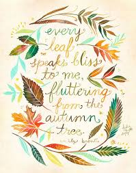 best 25 fall quotes ideas on fall season quotes