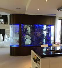 aquarium trendy fish tank room divider design for living room