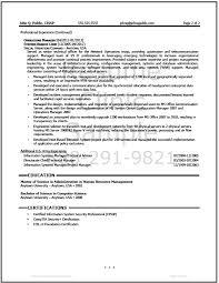 technical resume writer resume writer it