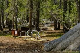 camping in yosemite campgrounds national parked