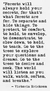 best 10 quotes about nature ideas on pinterest emerson quotes