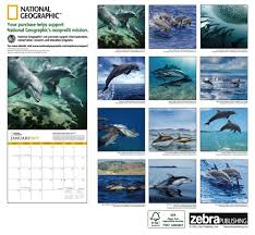 national geographic dolphins 2017 wall calendar national