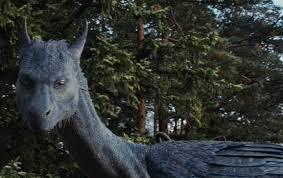 Eragon Arya Sex - eragon the movie what went wrong a hopeful graduate s blog