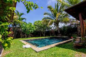 Trees Backyard Swimming Pool And Palm Trees In The Backyard Stock Images Image