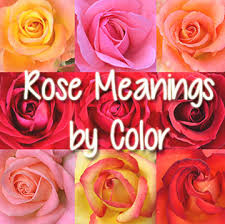Colored Roses Rose Meanings By Color Romancefromtheheart Com