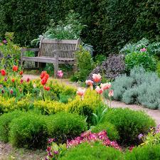 blog john u0027s plant notes u2014 berkeley garden club