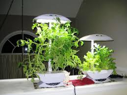 Indoor Gardening by Indoor Garden Kits With Light All The Best Garden In 2017