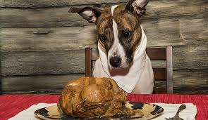 thanksgiving day safety tips 3 foods that may harm your